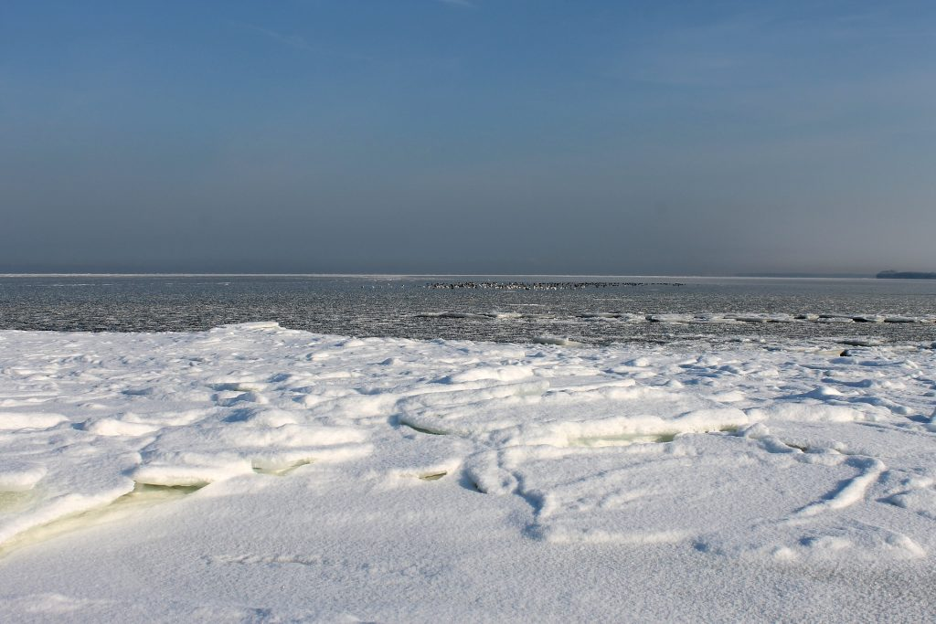 Morze Bałtyckie zimą