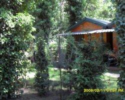 Domki i pokoje w Pobierowie